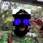 Avatar of Shroom