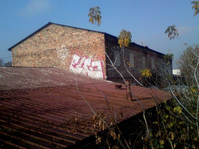 Photo #43037 by Bandito