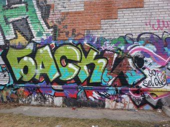 Photo #85365 by Basky