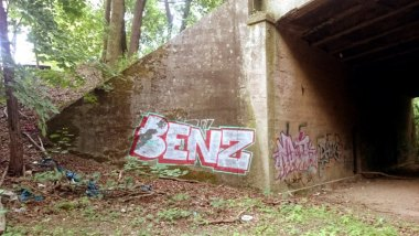 Photo #176269 by Benzen26