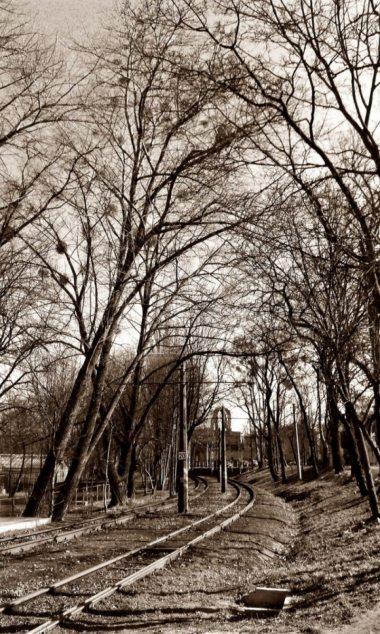 Photo #149874 by BiGoSsOoN