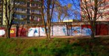 Photo 130594
