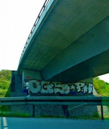 Photo #164724 by GBBI