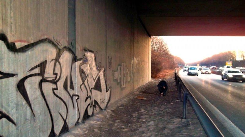 Photo #148497 by GraffitiAugsburg