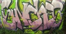 Photo 17095