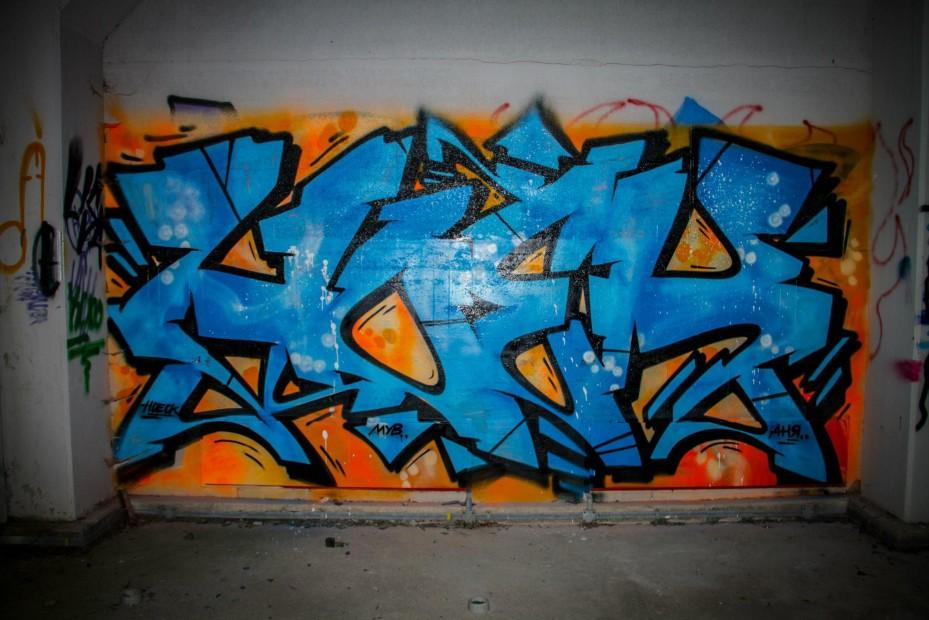 Photo #17119 by Hoek143