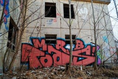 Photo #205881 by MRB