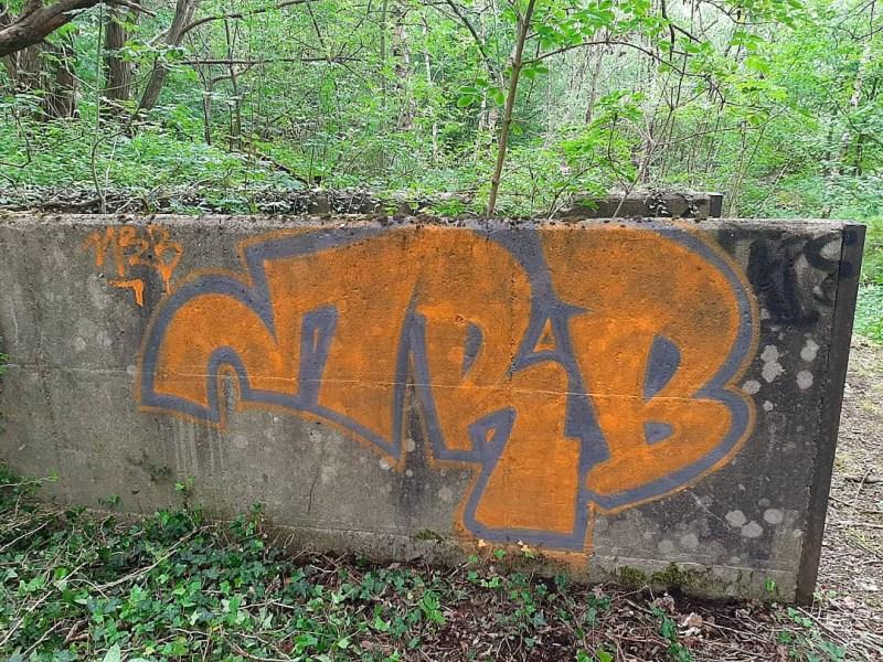 Photo #232161 by MRB