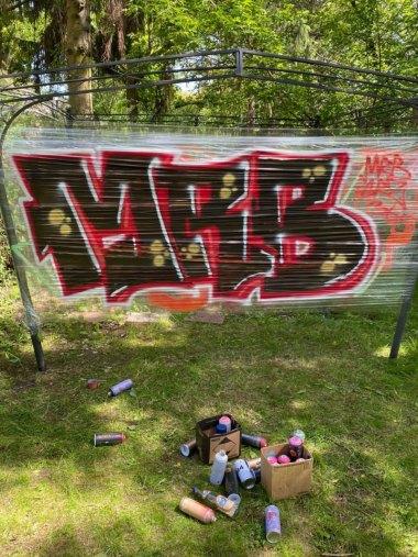 Photo #231616 by MRB