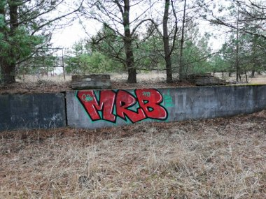 Photo #228326 by MRB