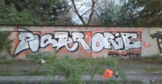 Photo 2864