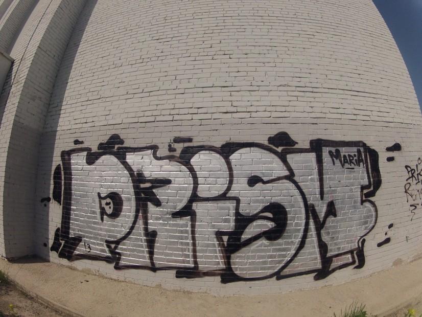 Photo #8661 by Prisma