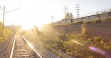 Photo 7906