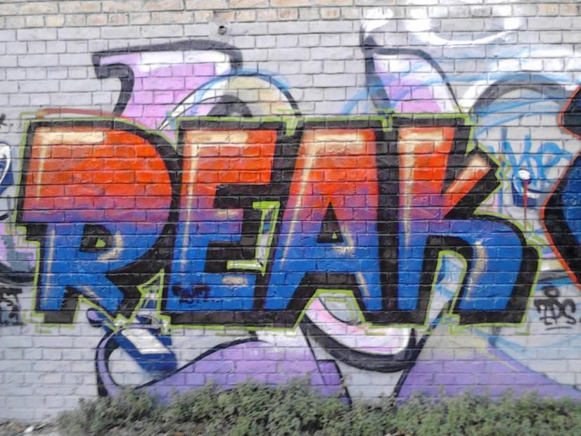Photo #8426 by ReaK