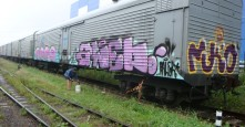 Photo 22095