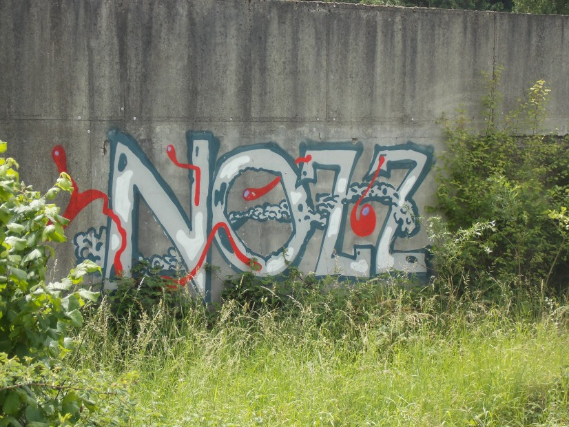 Photo #20043 by SEaone