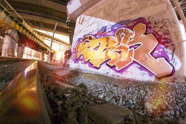 Photo #133078 by Scaro