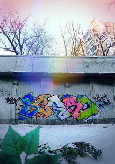 Photo #133073 by Scaro