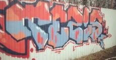 Photo 4742