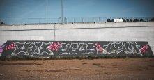Photo #231763 by UGMSquad