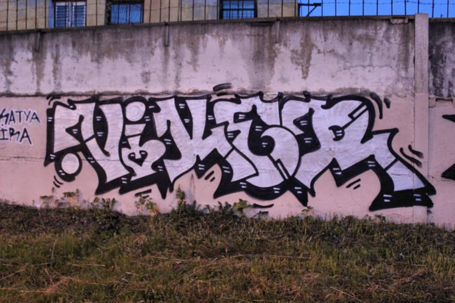 Photo #27453 by Veekeveryweek