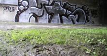 Photo 13742