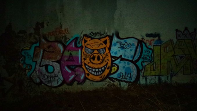 Photo #56618 by baot
