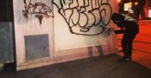 Photo 130079
