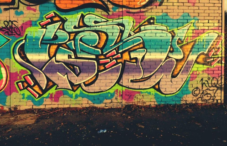 Photo #14229 by djangooo