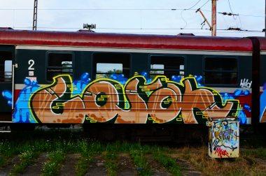 Photo #123508 by dzik