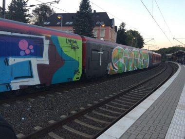 Photo #115553 by gartenzwerg