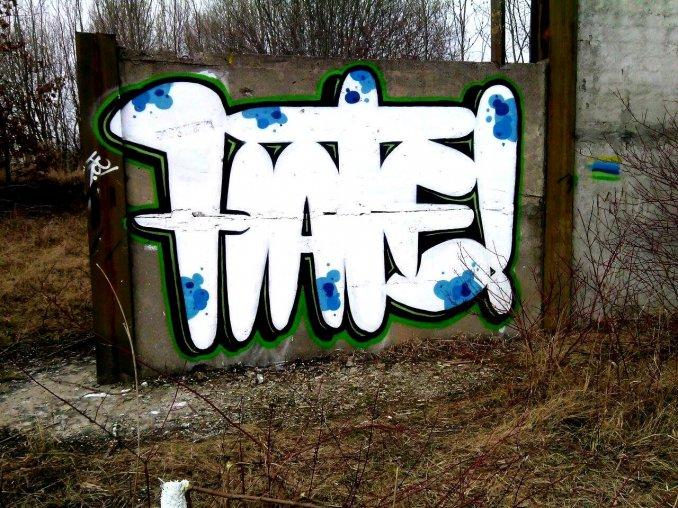 Photo #76403 by hatenwd