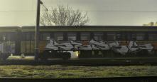 Photo 68645