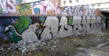 Photo 128140