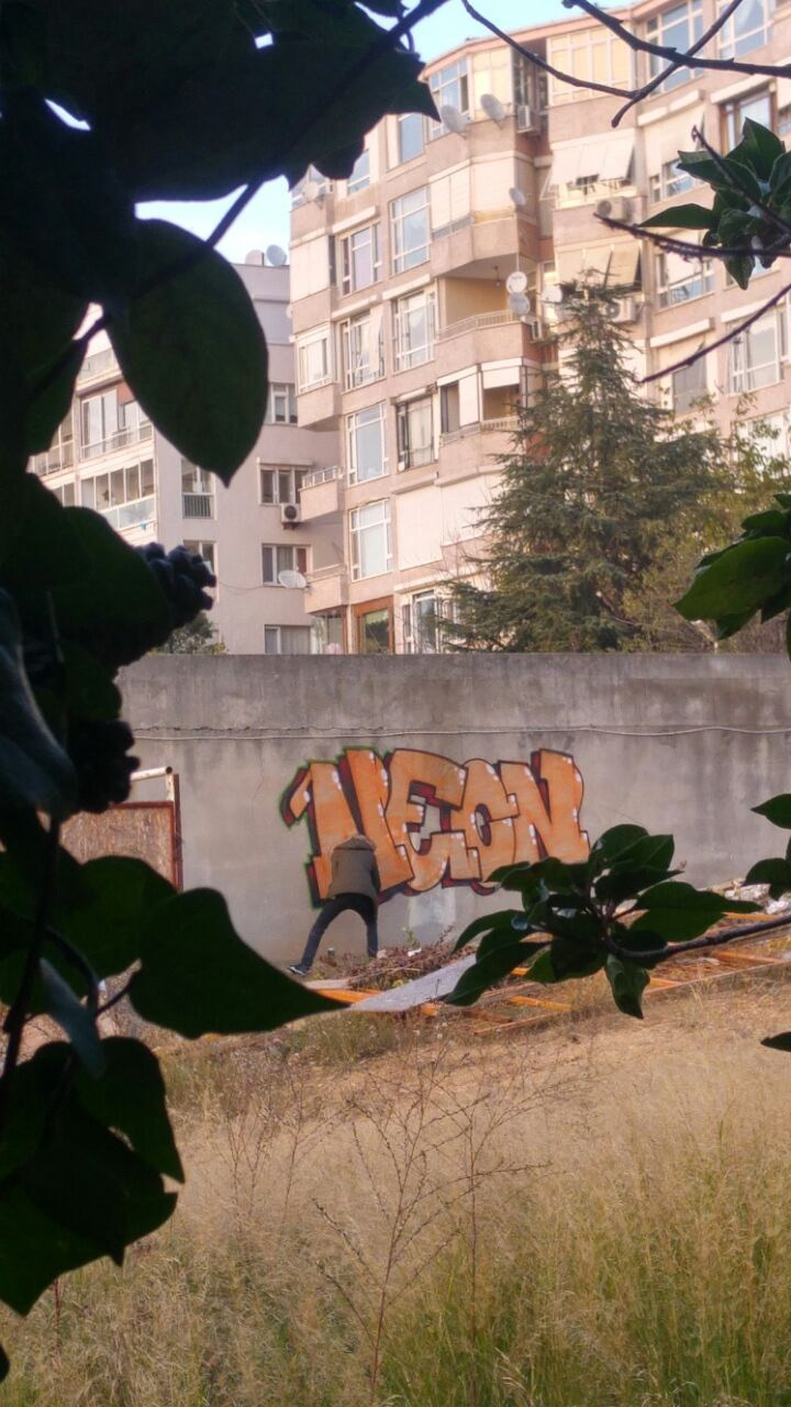 Photo #231340 by neonlan