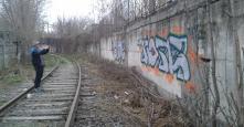 Photo 106306