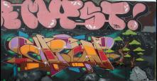 Photo 31771