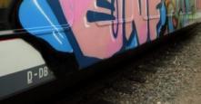 Photo 126383