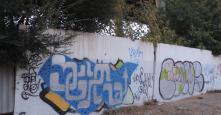 Photo 115878
