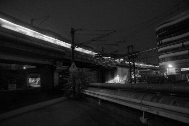 Photo #229770 by wypad_z_baru