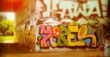 Photo 8920