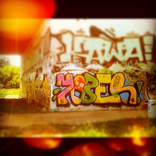 Photo #8920 by yober